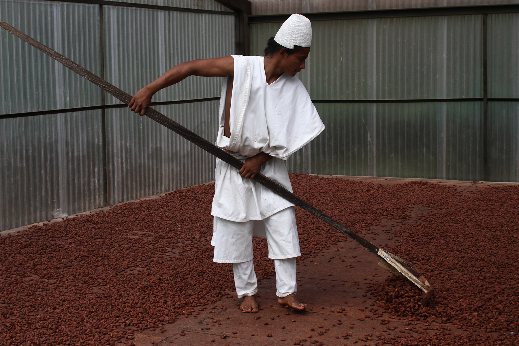 Arhuaco-cacao-works