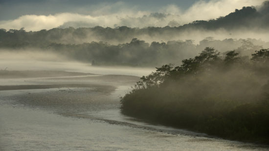 Sunrise on Napo River, Amazon